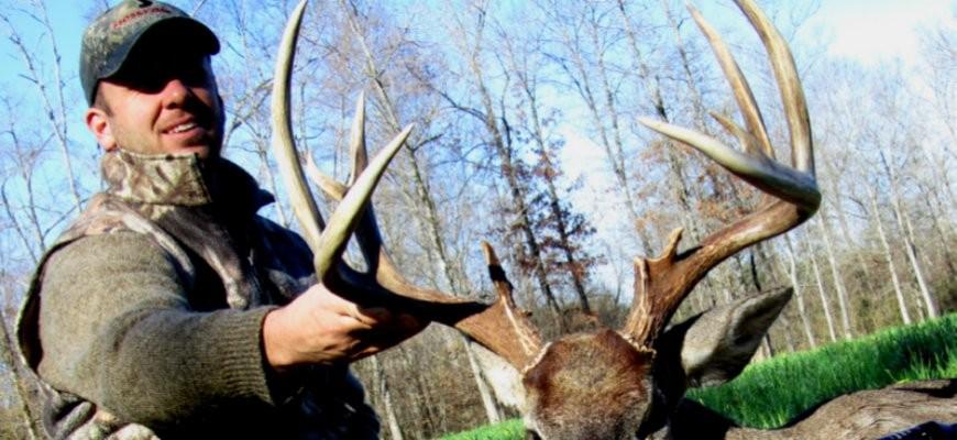 mitt deer 2